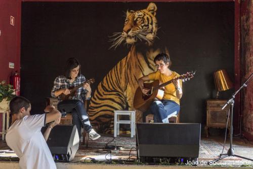 GuitarrasaoAlto-8181