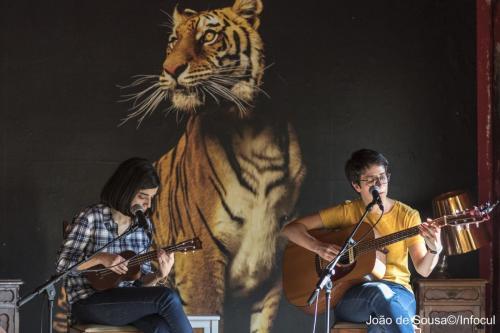GuitarrasaoAlto-8230