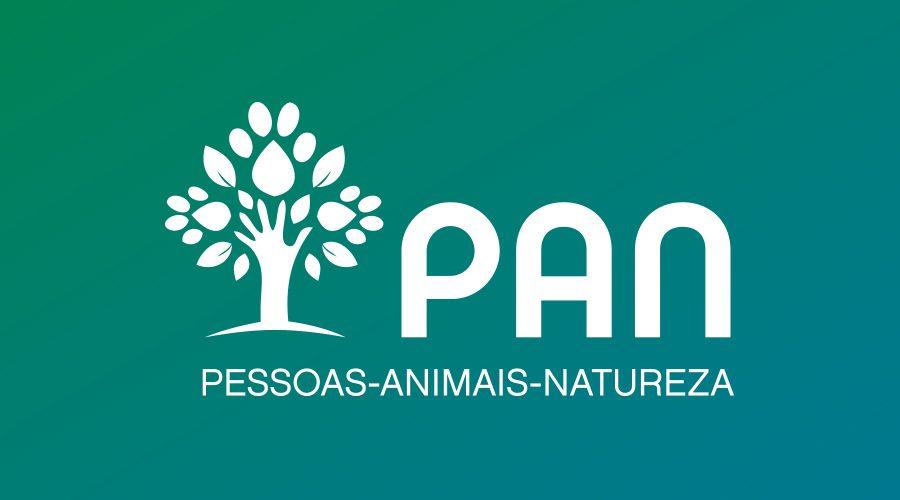 Lisboa: PAN quer o fim do abate de pombos na cidade e que estes passem para o pelouro do bem-estar animal