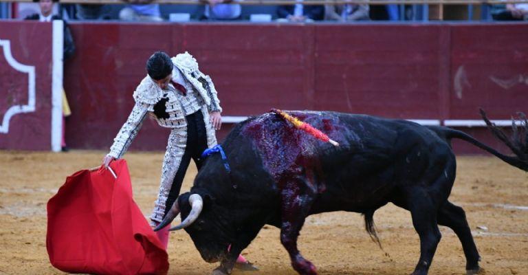 Pablo Aguado colhido em Madrid
