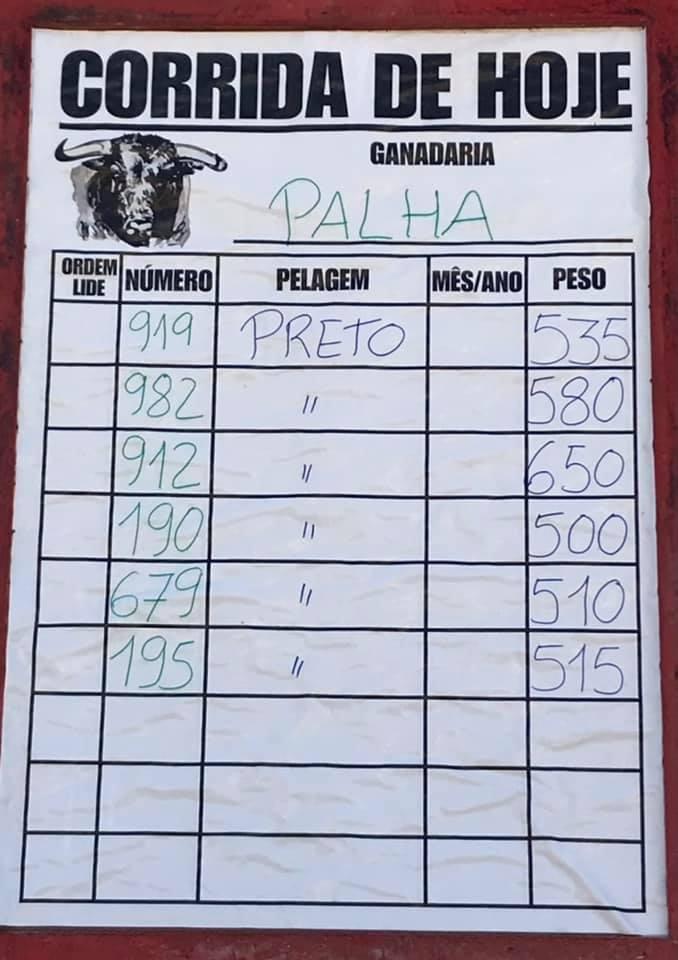 Alcochete: Pesos dos touros da ganadaria Palha