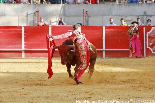 Escribano, Fortes e Serrano no regresso dos touros a Las Ventas