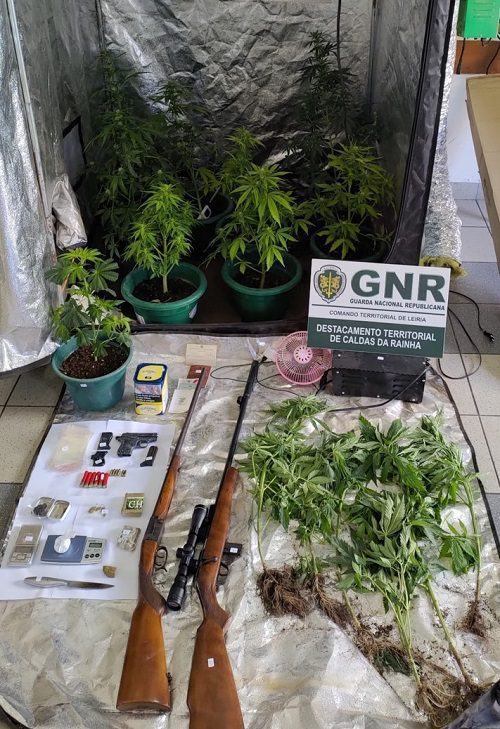Alcobaça: Três detidos com mais de 700 doses doses