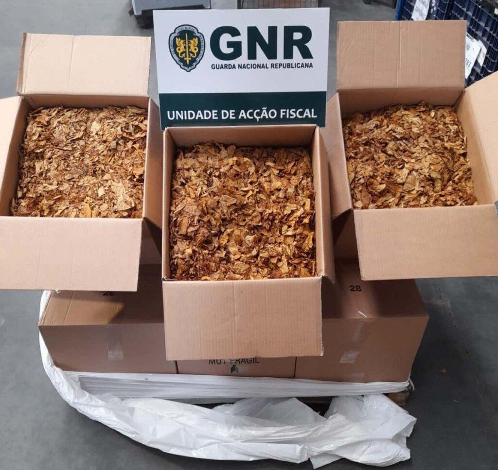 Setúbal: GNR apreende 100 quilos de folha de tabaco em situação irregular