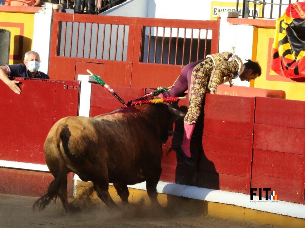 Antonio Ferrera sofreu cornada de dez centímetros