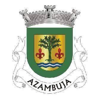 Junta de Azambuja não contrata artistas anti-taurinos