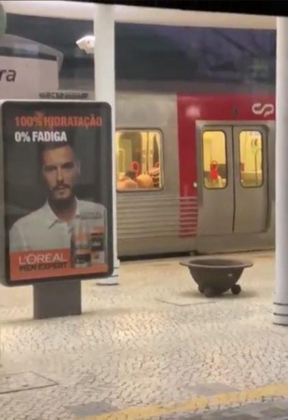 Dois homens apanhados a fazer sexo num comboio