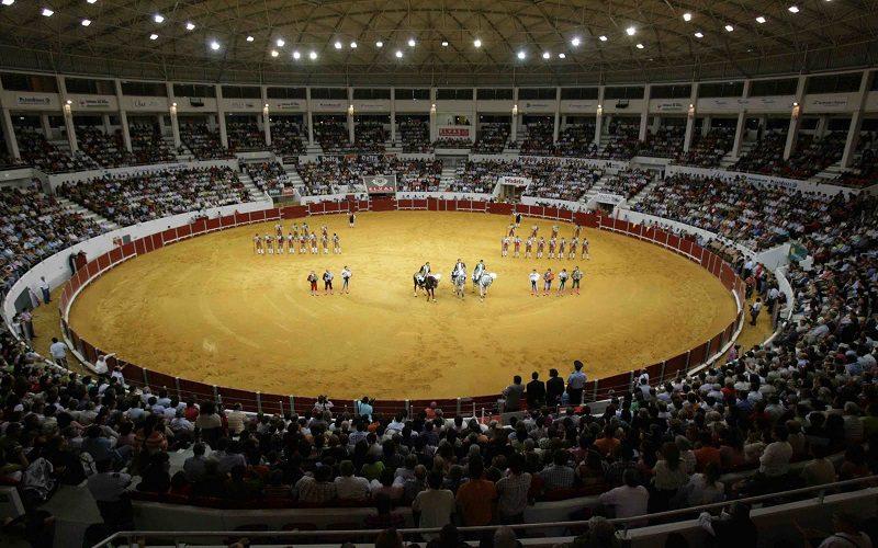Câmara de Elvas impedida de oferecer bilhetes para as corridas de touros